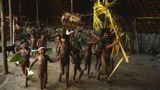 The Awá: Sebastião Salgado's gallery - Survival International