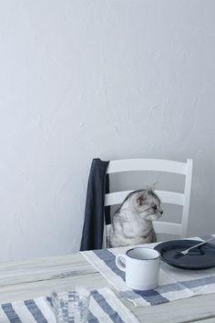 human, where's my breakfast?//