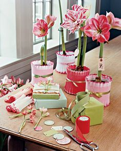 Wrapping  I think giving plants and flowers is an universal gift.    Here is a cool way to wrap them…