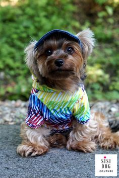 https://flic.kr/p/VEfHG1 | 8,sisi dog couture, dog clothes pet clothing, pet supplies, dog hoodie, cothes for dog, bluza dla psa ubranko dla psa | x-default