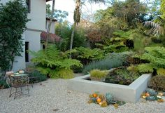 dry vs. lush -- nice contrast -- by Jay Griffith landscape architect