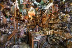 Antiques shop, Aleppo Souq|Syria