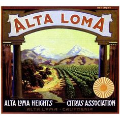 Alta Loma, San Bernardino County, CA -Vintage Alta Loma Heights Scenic Orange Citrus Fruit Crate Box Label Advertising Art Print. Printed on highest quality stock soft gloss paper. Posters Vintage, Vintage Labels, Vintage Art, Type Posters, Poster Prints, Art Prints, Orange Crate Labels, Label Art, Vegetable Crates