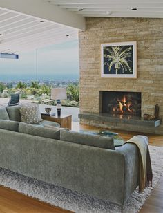 Fireplace Hearths Design Ideas, Pictures, Remodel, and Decor - page 5