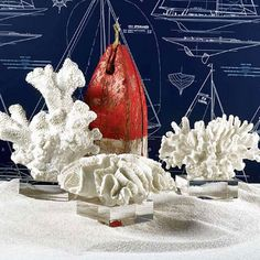 White Coral Sculptures on Glass Stand - Set of 3 different styles.