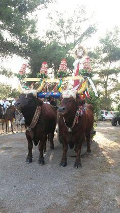 Festa della natività di San Giovanni Battista #Oristano #tradizione #GremioContadini  #Sardegna