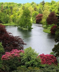 Beautiful Stouhead House Lake - Wiltshire