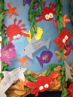 Create an ocean habitat bulletin board.