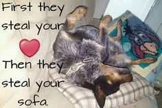 So true, or the pillows on your bed. :-)