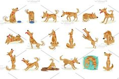 Brown Dog Set Of Normal Everyday Activities. Set Of Classic Pet Dog Behavior Illustrations In Cute Carton Style Isolated On White Background. Pencil Illustration, Graphic Illustration, Illustrations, Puppy Room, Pet Dogs, Pets, Everyday Activities, Brown Dog, Creative Sketches