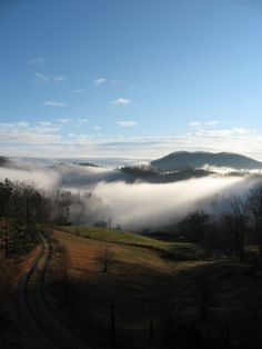 5 Things To Love About Asheville, North Carolina. I will live here someday Asheville North Carolina, North Carolina Homes, Asheville Nc, Vacation Trips, Dream Vacations, Places To Travel, Places To See, Mountain City, Nc Mountains