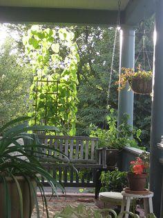 luscious green porch.