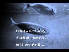 金子みすゞSMC No.52 お魚