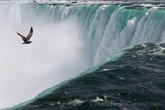 A flight over the Niagra fall