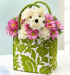a-DOG-able flower arrangements for dog lovers!