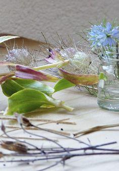 Ein neuer Gartenkalender und Pflanztöpfchen aus Tetrapack