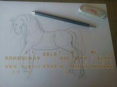 WiP Pferd ....