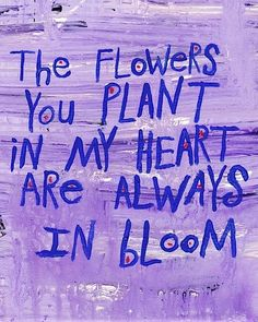 Love.  Reminds me of when you pulled the car over to pick the flowers I said were pretty.  Melted my Heart.  <3  I Love you Brian