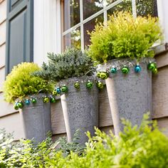 Outdoor Ornaments: Fill French galvanized buckets with seasonal evergreens -- such as 'Blue Star' juniper (pictured) - to display outside. Trim the buckets with small ornaments strung onto tinsel.