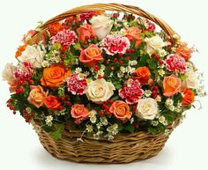 Arrangement of 20 Mixed roses, Mixed carnation hiperico red gypsophila flower and green leaf in a basket Basket Flower Arrangements, Artificial Floral Arrangements, Beautiful Flower Arrangements, Summer Flowers, Silk Flowers, Beautiful Flowers, Flower Basket, Flower Pots, Gypsophila Flower