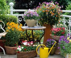 Mixing pots & urns of different size & shape can make for a very appealing look for your patio!