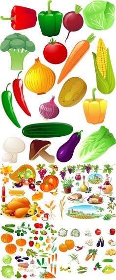 Fresh fruits and vegetables vector graphics
