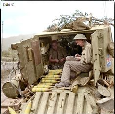 Rear view of a 'Bishop' 25-pdr self-propelled gun of 506th Battery, 142nd (Royal Devon Yeomanry) Field Regiment, showing the crew inside the fighting compartment near Cava De' Tirreni, Italy. 28 September 1943.