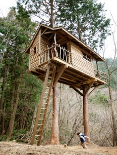 1000 Images About Treehouse Ideas On Pinterest