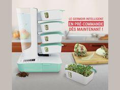 Une idée révolutionnaire pour une alimentation saine à base de graines germées