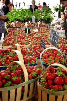Strawberries in Provence, FRANCE. Just some of the fresh produce you are likely to find on a French food tour. Why not visit our web site for recommended tours at http://www.allaboutcuisines.com/food-tours/france/in/france or perhaps a cooking class at http://www.allaboutcuisines.com/cooking-school-classes/france/in/france #Travel France #French food.: