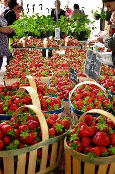 Les fraises du Québec!