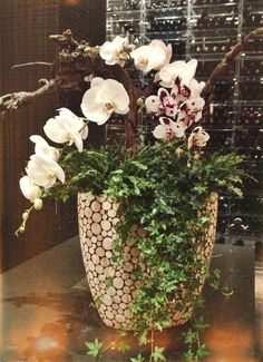 Large arrangement at Bymark Restaurant by McEwan Floral using potted orchids, ferns, ivy and grapevine wood