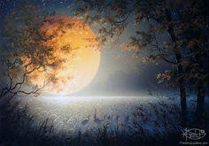 Resultado de imagen para paisajes nocturnos