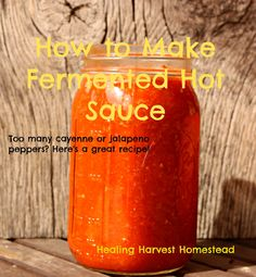 How to Make Fermented Hot Sauce with Peppers. (You Can Even Use the Dried Grocery Store Ones) — Home Healing Harvest Homestead Fermented Hot Sauce Recipe, Hot Sauce Recipes, Real Food Recipes, Habanero Recipes, Tabasco Pepper, Red Pepper Sauce, Dried Peppers, Fermentation Recipes, Dehydrated Food