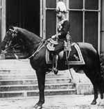 """Rupert, an Australian stock horse or """"Waler"""", ridden by George V"""