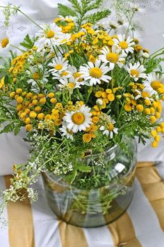Tansy And Chamomile....