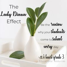 How one action by Lady Diana changed my outlook on teaching - and how it can change yours, too. Third Grade Math, Grade 3, Making Life Easier, Teacher Quotes, Lady Diana, Classroom Themes, Elementary Education, Classroom Management, Action