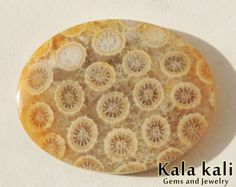 Fossil coral Cabochon Oval shapecream  Floral by KalaKaliGems, €36.00