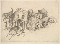 Wenceslaus Hollar (Bohemian, 1607-1677). Eleven Hounds, 1625-77. Etching. The Metropolitan Museum of Art. The Elisha Whittelsey Collection, The Elisha Whittelsey Fund, 1951 (51.501.1373)