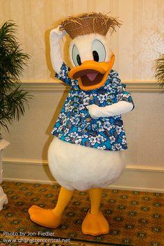 Donald Duck - South Seas Breakfast