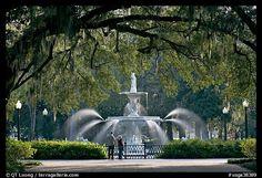 Politics saved Savannah during the war.