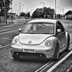 My naughty Beetle <3