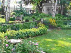 Garten mit Schatten Pflanzen - Tipps für die Gestaltung