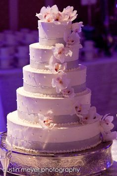 White with accent Wedding cake