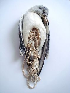 Bizarrely beautiful. Jane Hayworth graduated from fashion and textiles at Winchester school of Art, UK. With an obsession with Taxidermy, she creates these beautiful objects. In her art, she is particularly attracted to the 'rejected' types of animals like frogs, rabbits and scavenger birds. The result is bizarrely beautiful. Poetic.