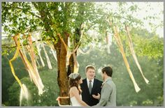 tree design ribbons
