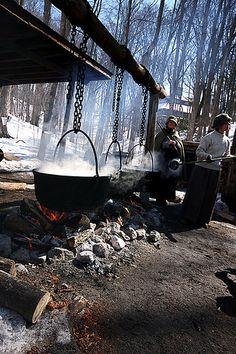 boiling sap in kleinburg, ontario