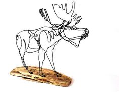 Handcrafted Moose Wire Sculpture    Made with one continuous piece of unbroken wire using a pliers and attached to the shown driftwood base.