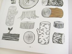 """""""20 Ways to Draw a Tree and 44 Other Nifty Things from Nature"""" by Eloise Renouf."""