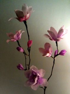Image of Magnolias - Crepe paper flowers